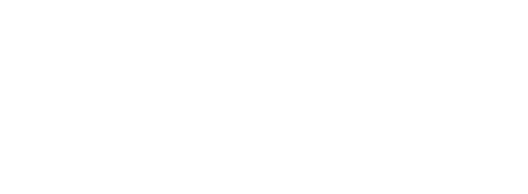 NEXT STAGE PROJECT
